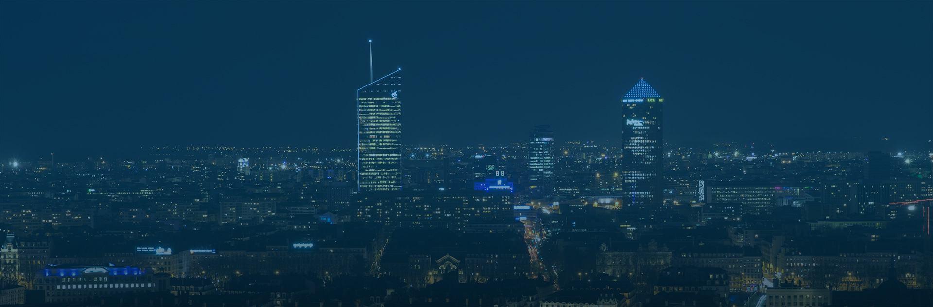 panorama de lyon la nuit